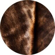 Light brown mink