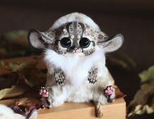 Inari Fox: Spotted beige with horns and wings