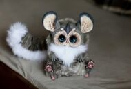 Tiny Griffin Chinchilla