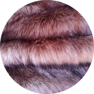 Reddish-brown polar fox (lion's mane)